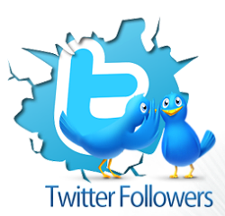 Get Twitter Followers